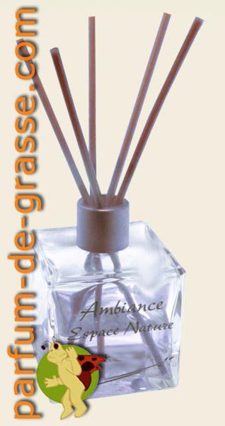 Lavande parfum d 39 ambiance en spray les parfums de for Lavande interieur
